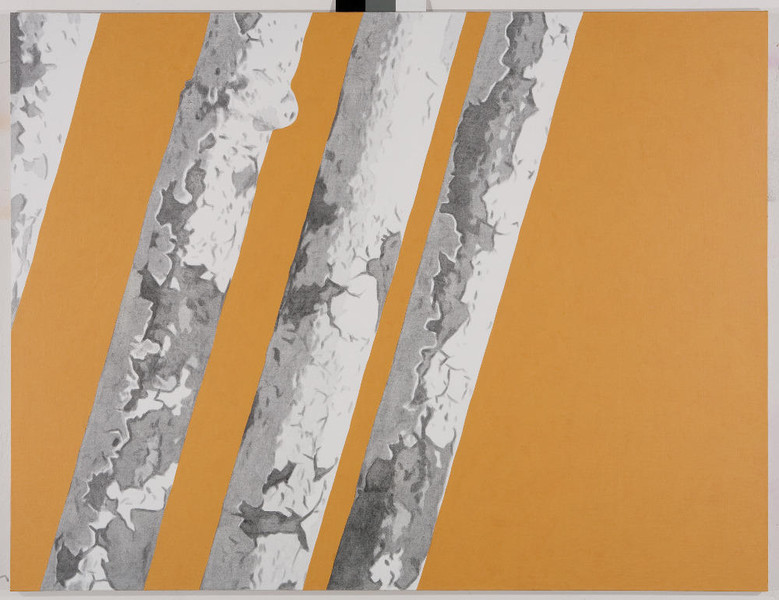 10.10.1987 I, 2009, 130x170 cm, acrylic on canvas