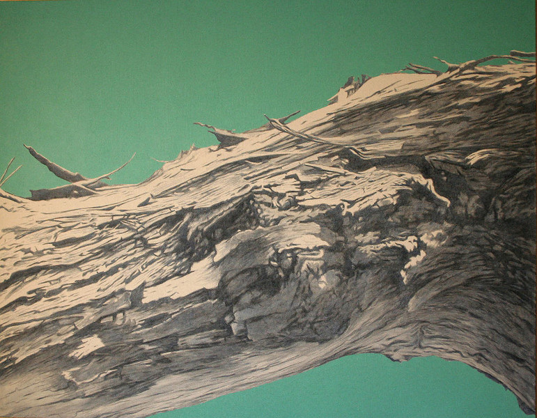 08.01.1988.II, 2008, 110x140 cm, acrylic on canvas